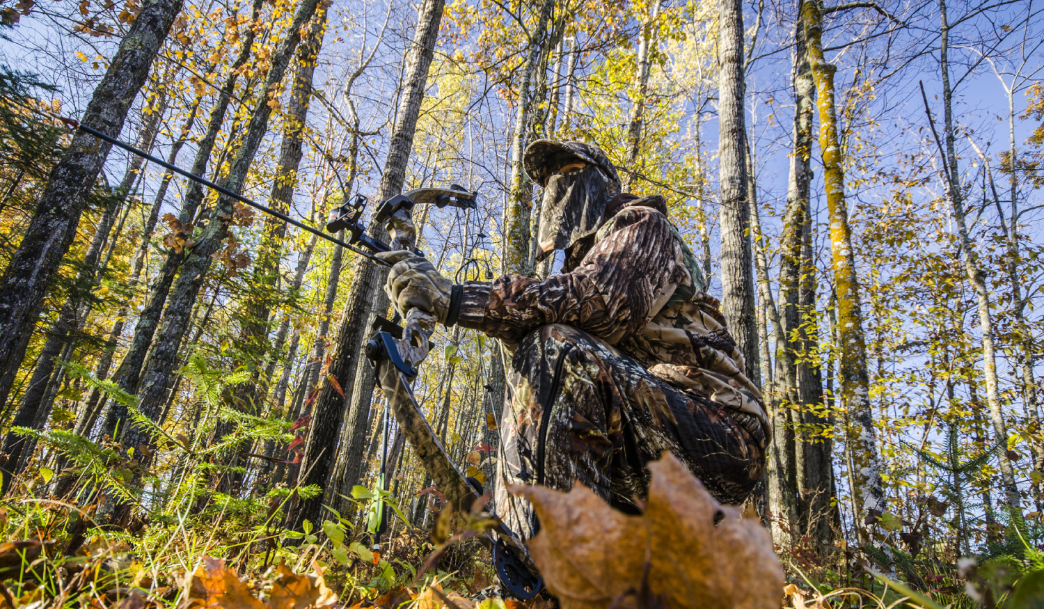 Photo of a hunter on leased hunting land